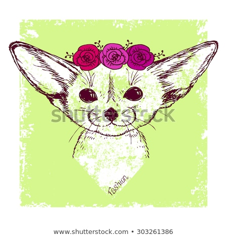 Cute fennec fox and rose flowers cartoon hand drawn style Stock photo © amaomam