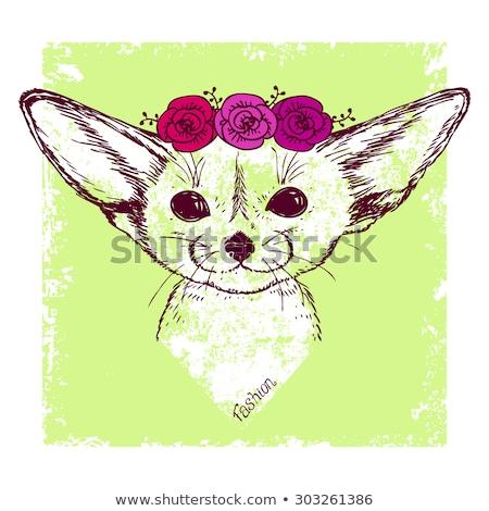 Cute Fox rosa fiori cartoon Foto d'archivio © amaomam