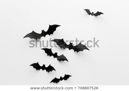 Halloween siyah bat kırmızı gözler dizayn Stok fotoğraf © angelp