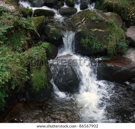 Triberg Waterfalls detail Stock photo © prill