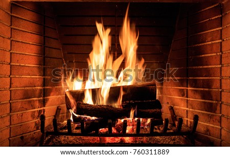 Log fire burning in fireplace Stock photo © IS2
