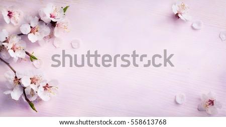 Háttér Virágokkal Stock fotó © Konstanttin