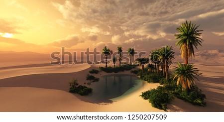Oásis belo naturalismo africano céu árvore Foto stock © andromeda