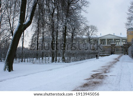 冬 風景 ギャラリー 庭園 空 雪 ストックフォト © Pilgrimego