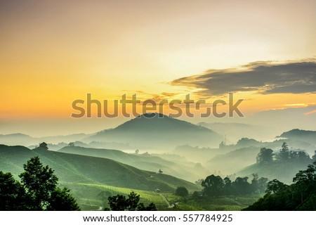 Dramatyczny wygaśnięcia niebo złoty promienie charakter Zdjęcia stock © vapi