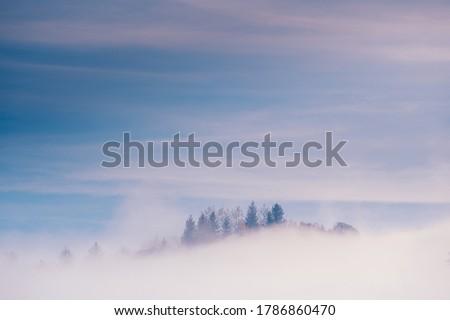 cold foggy hill Stock photo © pancaketom