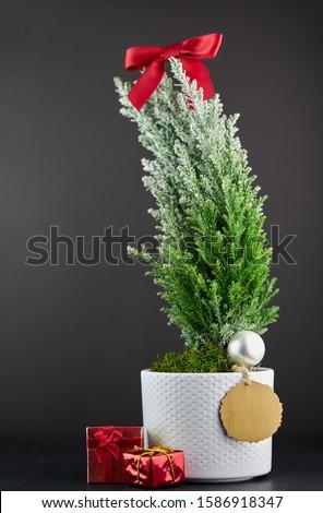 Karácsonyfa ajándékdobozok golyók terv tél belső Stock fotó © furmanphoto