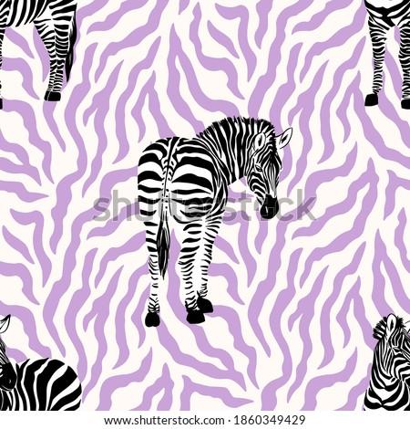 engraçado · zebra · imagem · jardim · zoológico · ver · retrato - foto stock © andreasberheide