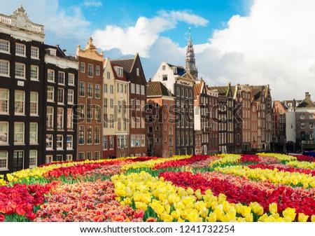 Casas Holanda holandês primavera cidade cenário Foto stock © neirfy