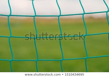 Piłka nożna piłka nożna netto tapety zielona trawa Zdjęcia stock © matimix