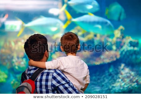 Dad with son in oceanarium Stock photo © jossdiim