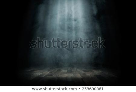 Concierto iluminación iluminación rock música luz Foto stock © galitskaya