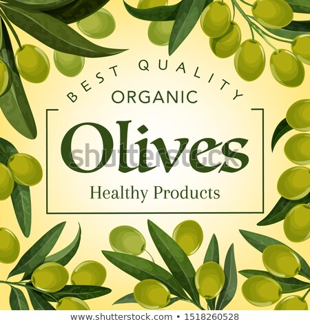 Olive Extra Virgin Organic Product Poster Vector Stock photo © pikepicture