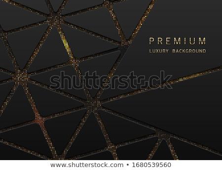 Vettore abstract nero mezzitoni Foto d'archivio © Iaroslava