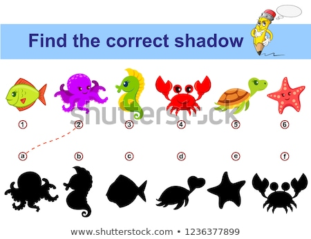 Funny turtle - shadow educational kids game. Vector illustration Stock photo © natali_brill