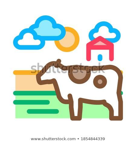 Mucca frazione icona vettore contorno illustrazione Foto d'archivio © pikepicture
