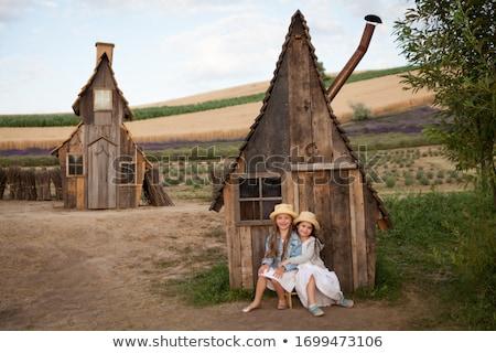 Bois rural portes deux voisins vieux Photo stock © borna_mir