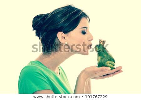 kissing a frog Stock photo © olira