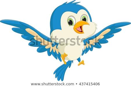 Cute cartoon uccello design Foto d'archivio © indiwarm