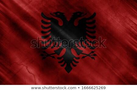 Bandera Albania pared de ladrillo pintado grunge textura Foto stock © creisinger