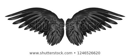 Zwarte engel naakt vliegen hemel bliksem Stockfoto © carlodapino