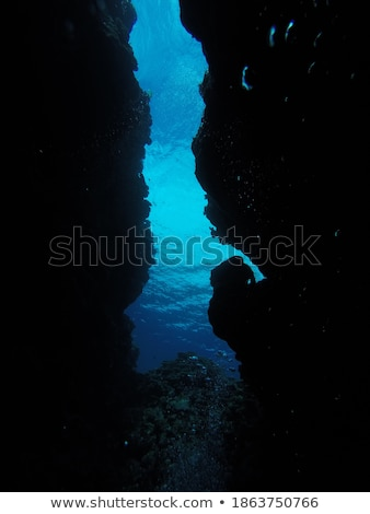 tourist diving in the sea Stock photo © Witthaya