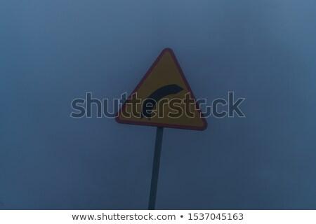 segnale · di · traffico · girare · nebbia · mattina · albero - foto d'archivio © cgsniper