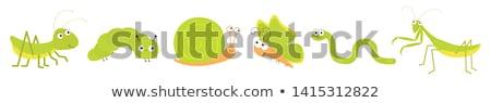 desenho · animado · caracol · retro · textura · isolado · branco - foto stock © genestro