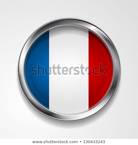 Vector button with stylish metallic frame. French flag Stock photo © saicle