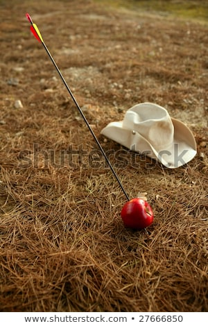 William Tell metaphor, apple and arrow in forest Stock photo © lunamarina