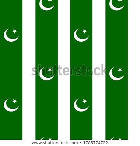 Vlag Pakistan hand kleur land stijl Stockfoto © claudiodivizia