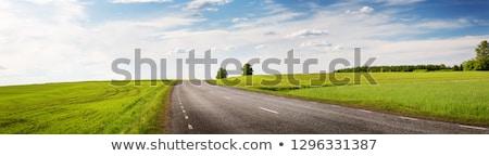 Mező út égbolt felhők természet hegy Stock fotó © zzve