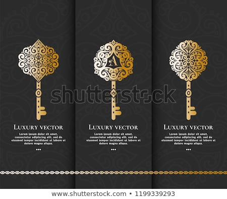 Brand - Golden Key. Stock photo © tashatuvango
