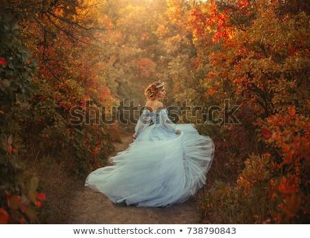 Kadın mavi elbise güzel gülen kız Stok fotoğraf © stepstock
