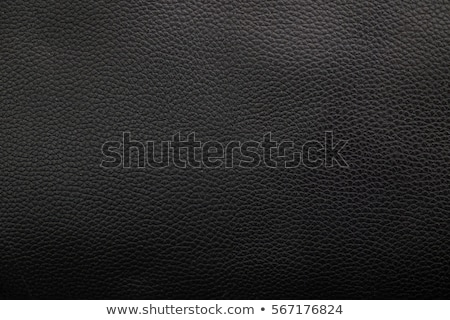 Deri bavul dosya araba model Stok fotoğraf © artag
