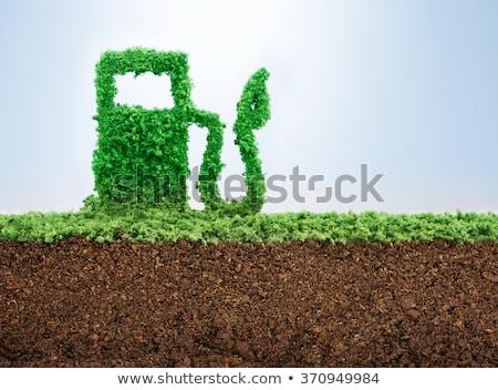 Yeşil yakıt gezegen ekoloji orman dizayn Stok fotoğraf © digitalmojito