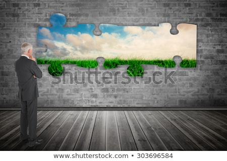 Rear view of Caucasian businessman looking away from camera Stock photo © dgilder
