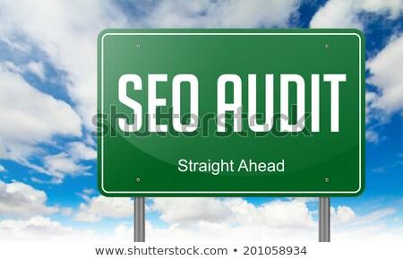 Seo Audit on Green Highway Signpost. Stock photo © tashatuvango