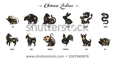 serpente · cinese · astrologia · calligrafia · pittura · zodiaco - foto d'archivio © soleil