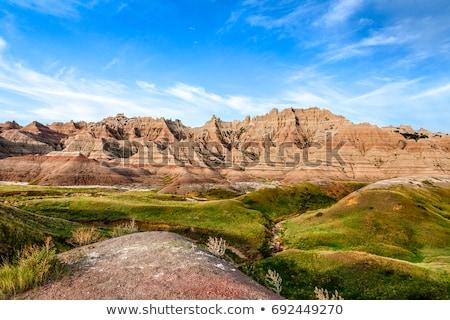 Badlands Stock photo © elwynn