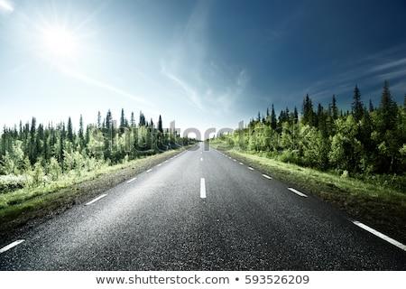 облачный · день · шоссе · перспективы · выстрел · открытых - Сток-фото © ivanhor