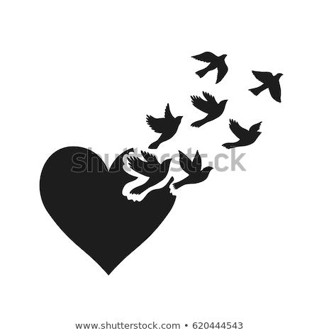 Heart shaped  flying birds, vector Stock photo © beaubelle