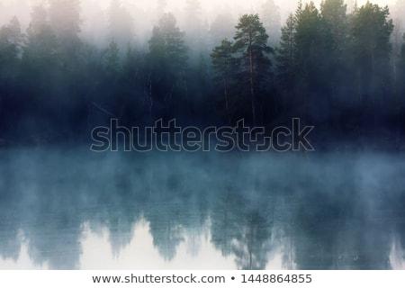 fog at the river stock photo © dar1930