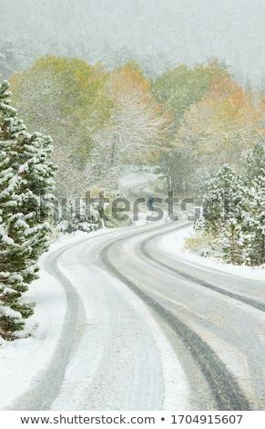 Curvey rural road Stock photo © njnightsky
