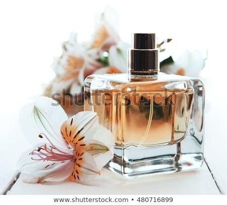 bottle of perfum and flower Stock photo © alrisha