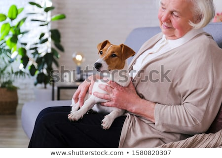 senior lady and her dog stock photo © shevs