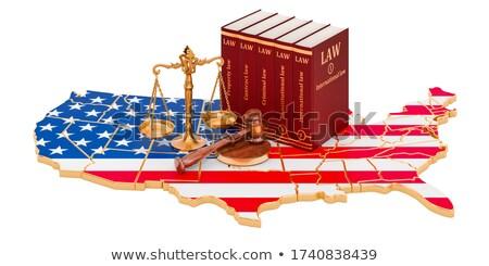 The constitution isolated on white Stock photo © klikk