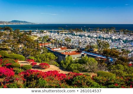 Kwiaty widoku port dziedzictwo parku punkt Zdjęcia stock © meinzahn