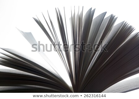 Open old book, pages fluttering. Fantasy, imagination, education Stock photo © photocreo