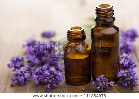 A violet medicine bottle Stock photo © bluering